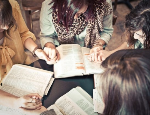 New Women's Bible Study